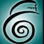 Reiki bij Soul Insight