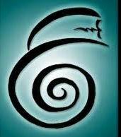 Reiki-cursus bij Soul Insight